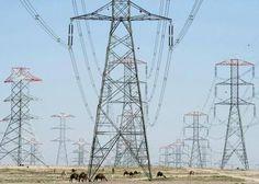 حمل الكهرباء المتوقع اليوم 24800 ميجاوات - توقعت وزارة الكهرباء والطاقة المتجددة أن يصل الحمل الأقصى اليوم السبت إلى 24800 ميجاوات مقابل 26500 ميجاوات أمس الجمعة والذي لم يشهد أي تخفيف للأحمال. وكانت الوزارة قد أعلنت التعاقد مع شركة متخصصة في خدمة العملاء ومراكز الاتصال كول سنتر بهدف تلقي الشكاوى عن أي أعطال أو استفسارات تجارية ولتقديم خدمة متميزة للعملاء طبقا للمعايير العالمية وذلك على الرقم 121(من خط أرضي أو محمول) وذلك في إطار السعي لتحسين الخدمات المقدمة من شركات توزيع الكهرباء…