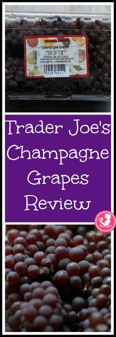 Trader Joe's Champagne Grapes | BecomeBetty.com Trader Joe's Champagne Grapes review. Want to know if this is something worth putting on your shopping list from Trader Joe's? All pins link to BecomeBetty.com where you can find reviews, pictures, thoughts, calorie counts, nutritional information, how to prepare, allergy information, price, and how to prepare each product. #traderjoes #tjs #traderjoeslist #grapes #produce #fruit #champagne