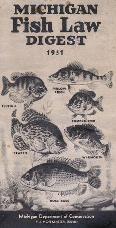 1951 Michigan Fishing License Guide
