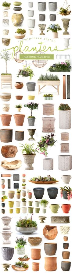100+ Spring and Summer Planters at Terrain.