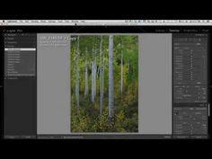 Lightroom Automask - YouTube