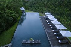 The swimming pool with majestic view at Alila Ubud - Bali