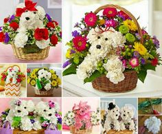 Puppy Bouquets made with carnations. DIY Tutorial on our site.