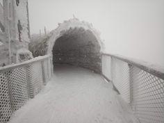 Stezka v oblacích Dolní Morava | Zajímavosti Snow, Outdoor, Outdoors, Outdoor Games, The Great Outdoors, Eyes, Let It Snow