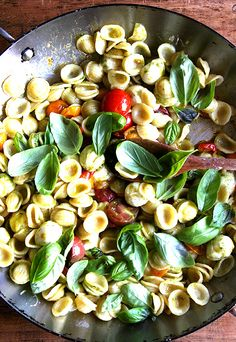 orecchiette with cherry tomatoes, mozzarella and basil