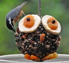 Gezellig vogelvoer