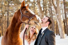 bride and groom with horse at winter wedding | wedding horse @mazzonehosp