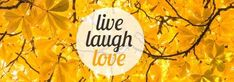 This is a creative template for a Tumblr background post. This can be easily edited in Design Wizard. A really cool background of leaves in the autumn with a circle textbox displaying 'live laugh love'.
