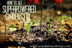 Gardening Composting How to get Superpowered Garden Soil - Is your garden soil not shaping up? Here's how to SUPERCHARGE it with nutrients for your soil, whatever soil type it may be. Garden Compost, Garden Soil, Lawn And Garden, Garden Plants, Garden Farm, Mulch For Vegetable Garden, Cut Garden, Gardening Vegetables, Farm Gardens