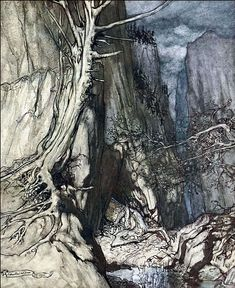 """There as a dread dragon he sojourns, and in a cave keeps watch over Alberich's ring"" The Rhinecold & The Valkyrie Arthur Rackham"