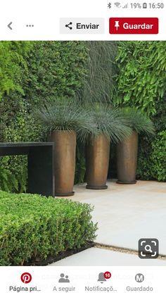Balcony Garden, Gardens, Plants, Garden, Outdoor Gardens, Plant, Balcony Gardening, House Gardens, Planets