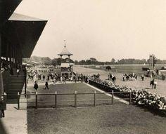 Saratoga  race track in 1885