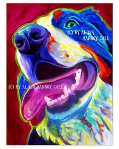 DawgArt: Colorful Pet Portrait Bernese Mountain Dog Art Print 8x10 by Alicia VanNoy Call. $12.00, via Etsy.