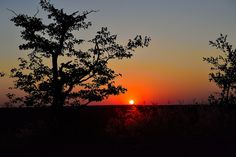 Sunset, Mapungubwe,