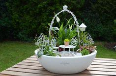 Romantik-Miniaturgarten (Mini Garden Set Romantic, Pflanzschale ø 33 cm, beides von MASON MINI GARDENS)nn29.07.2015 10:51