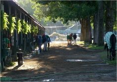 Historic Saratoga Race Course Stables- love to run by in the mornings and watch the horses.