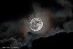 Super Moon 2016 - The Supermoon of 2016 Beautiful Moon, Super Moon, Sky, Outdoor, Image, Moon 2016, Tattoo, Outdoors, Heaven