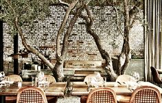 You'd never guess that The Tasting Kitchen sits on one of Venice's busiest thoroughfares: It's partly because of the fortress-like entrance, and partly because the loft-y, two-floor space revolves around a small grove of transporting olive trees.