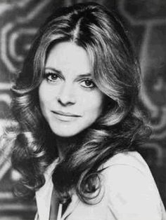 Jaime Sommers. The Bionic Woman