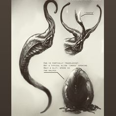 Alien: Xeno de Neill Blomkamp reiniciará la franquicia ignorando Alien³ y Alien: Resurrección | Fancueva