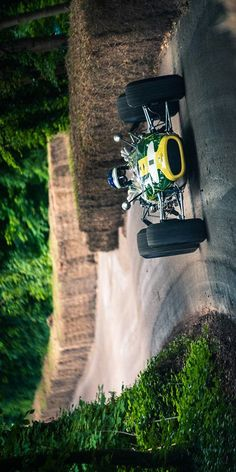 Jim Clark Lotus F1
