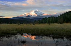 Mount Shasta : Climbing, Hiking & Mountaineering : SummitPost