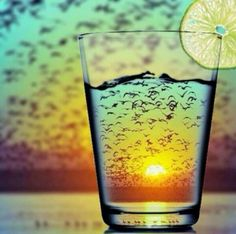 Funny pictures about Satisfying Sunset Refraction. Oh, and cool pics about Satisfying Sunset Refraction. Also, Satisfying Sunset Refraction photos. Creative Photography, Amazing Photography, Photography Tips, Digital Photography, Glass Photography, Capture Photography, Photography Backgrounds, Summer Photography, Professional Photography
