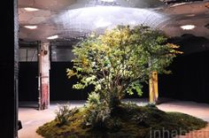PHOTOS: Full Scale Model of NYC's LowLine Underground Park Unveiled on the Lower East Side! | Inhabitat New York City