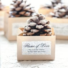 DIY Pinecone Fire Starters: They used for Wedding Favors but these would be great to take camping.  Minus all the fru fru of course.