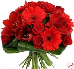 Wedding Bouquet of Red Roses Tulips and Gerbera Beautiful Flowers Photos, Flower Photos, Red Flowers, Red Roses, Delphinium, Gerbera, Tulips, Wedding Bouquets, Flower Arrangements