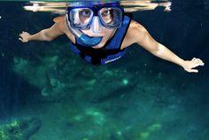 xel-ha-snorkel