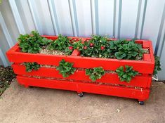 101 Pallet Ideas decided to paint their planter red and add wheels