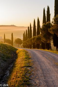 """Tuskany Parkway by lesefutter Provence, Places To Travel, Places To See, Wonderful Places, Beautiful Places, Theodora Home, Tuscany Landscape, Tuscany Italy, Sorrento Italy"