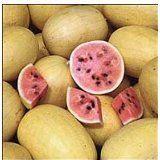 Watermelon - Golden Midget