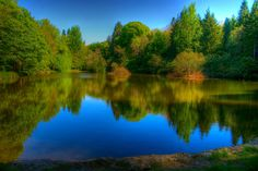 All sizes | Reflections on a Lake | Flickr - Photo Sharing!