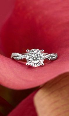 strands of scalloped pavé diamonds twist engagement ring / http://www.deerpearlflowers.com/twisted-engagement-rings-wedding-rings/