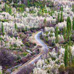 """Bozhan Valley in Spring"", Neyshabur, Khorasan Razavi, Iran (Persian: دره بوژان در بهار , نیشابور, خراسان رضوی) Credit: dr.saeed37(Dr. Saeed Malekkiani)"