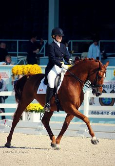 Lindsay Kellock & Eminence | Dressage at Devon l Flickr - Photo Sharing!