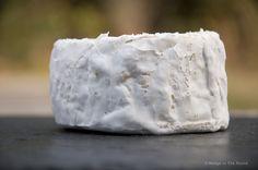 Mt. Tam    #cheese