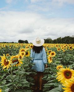 France this time of year is my favorite  long summer nights and sunflower fields for as far as the eye can see  #BTinFrance #France  #mytinyatlas #sunflower