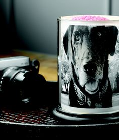 What an excellent way to showcase your dog. Custom shade for your simmering light. I told you Pink Zebra Rocks. Contact me for specials. Pink Zebra Consultant, Zebra Shades, Pink Zebra Home, Pink Zebra Sprinkles, Old Candles, Custom Shades, Everything Pink, My Face Book, Smell Good