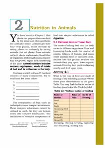 Download NCERT/CBSE Book: Class 7: Science: Science Science Textbook, Periodic Table, Bullet Journal, Books, Periodic Table Chart, Libros, Periotic Table, Book, Book Illustrations