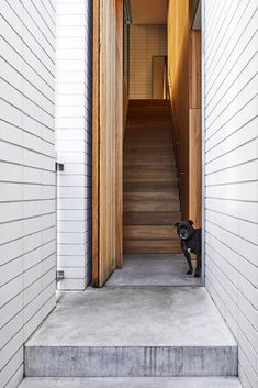 Edsall Street by Ritz&Ghougassian takes habitation as its primary focus, from which emerges an architectural language that, in turn, influences form. Stairs And Staircase, Staircase Design, Timber Battens, Melbourne Suburbs, Victorian Cottage, Street House, Cladding, The Locals, Exterior Design