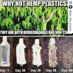 #Repost @dilute_the_power with @repostapp What Is Hemp Plastic? To understand…