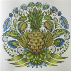 #Millie Marotta #Tropical Wonderland #coloringbook