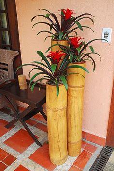 Utilitários | Bambu Rei