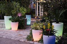 I vasi luminosi sono disponibili in due versioni