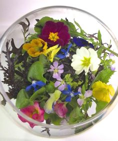 Spring salad from Maddocks Farm Organics.