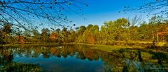 Fall's Reflections by faceTIMEalan . on Capture Memphis // The Germantown/Wolf River Greenway