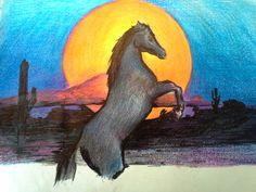 Stallion - Crayon on Paper by Don J. Baldwin